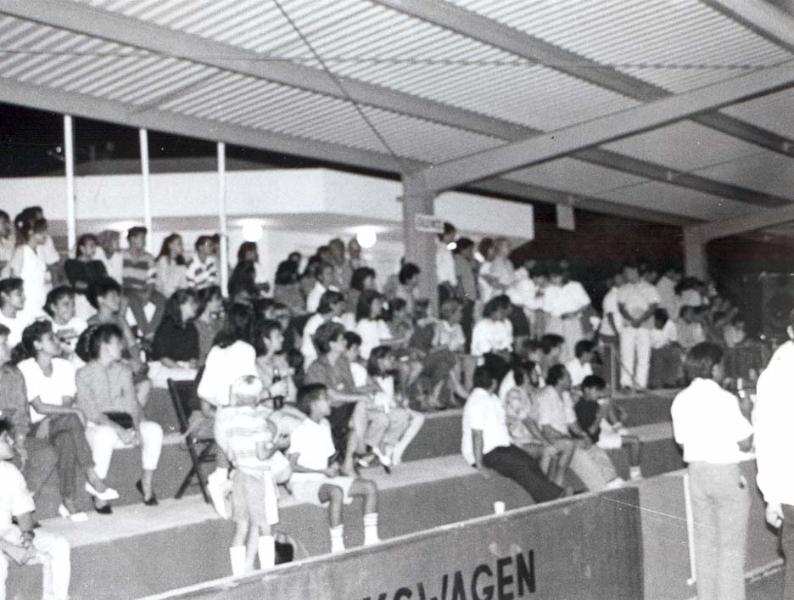publico-asistente